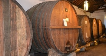 Visita bodega de vino en Lisboa